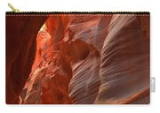 Red And Brown Swirling Sandstone Carry-all Pouch