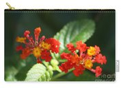 Red And Orange Lantana Carry-all Pouch