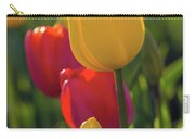 Red And Yellow Tulips Closeup Carry-all Pouch