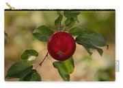Red Apple Ready For Picking Carry-all Pouch