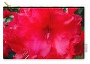 Red Azaleas Flowers 4 Red Azalea Garden Giclee Art Prints Baslee Troutman Carry-all Pouch
