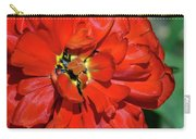 Red Ball Of Fire Carry-all Pouch