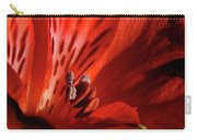 Red Beauty Carry-all Pouch