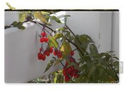 Red Berries On A White Fence Carry-all Pouch