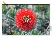 Red Bottlebrush Carry-all Pouch