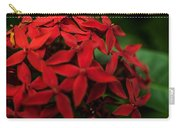 Red Bouquet 7 Carry-all Pouch
