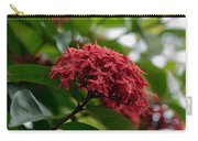Red Bouquet 9 Carry-all Pouch