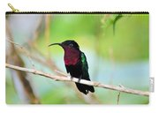 Red Breasted Humming Bird  Carry-all Pouch