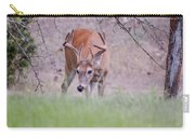 Red Bucks 6 Carry-all Pouch by Antonio Romero