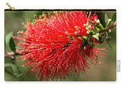 Red Burst Carry-all Pouch by Valeria Donaldson