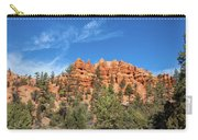 Red Canyon Tableau Carry-all Pouch