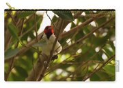 Red-capped Cardinal Digital Oil Carry-all Pouch