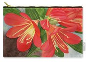 Red Clivias - Watercolor Carry-all Pouch