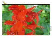 Red Crocosmia Lucifer Carry-all Pouch