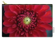 Red Dahlia Square Carry-all Pouch