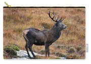 Red Deer Stag In Autumn Carry-all Pouch