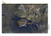 Red Eared Slider Turtle Carry-all Pouch