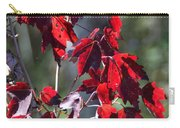 Red Fall Leaves In The Sun Carry-all Pouch