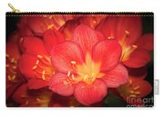 Multiple Red Flowers In Bloom Carry-all Pouch
