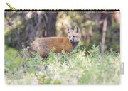 Red Fox Kit Looking For Mom Carry-all Pouch