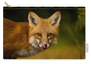 Red Fox Pictures 157 Carry-all Pouch