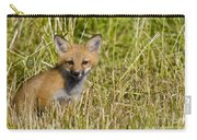 Red Fox Pictures 19 Carry-all Pouch