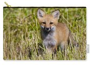 Red Fox Pictures 7 Carry-all Pouch