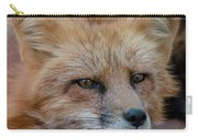 Red Fox Portrait 2 Carry-all Pouch