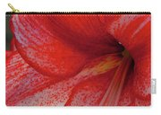 Red Hippeastrum Charisma Carry-all Pouch