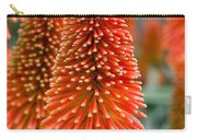 Red-hot Poker Flower Kniphofia Carry-all Pouch
