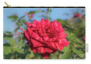 Red Intuition Hybrid Tea Rose, Red Stripe Rose Originally Pr Carry-all Pouch