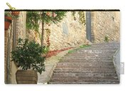 Red Ivy And Steps In Assisi Italy Carry-all Pouch