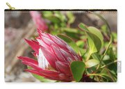 Red King Protea Bud Carry-all Pouch