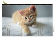 Red Kitten On A Beige Blanket Carry-all Pouch