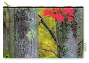Red Leaves Carry-all Pouch by Gary Lengyel