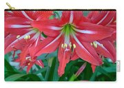 Red Lilies Carry-all Pouch