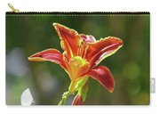 Red Orange Day Lilies I Carry-all Pouch