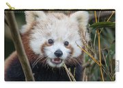 Red Panda Wonder Carry-all Pouch