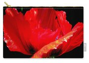 Red Pop Photograph Carry-all Pouch