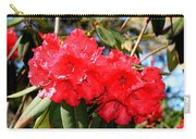 Red Rhodie Carry-all Pouch