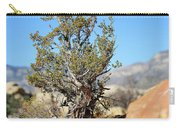 Red Rock Canyon Nv 3 Carry-all Pouch