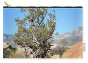 Red Rock Canyon Nv 4 Carry-all Pouch