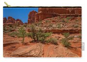 Red Rock Park Avenue Carry-all Pouch