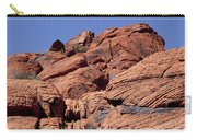 Red Rock Texture Carry-all Pouch