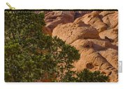 Red Rock Textures Carry-all Pouch