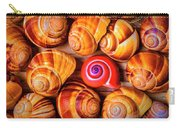 Red Snail Shell Carry-all Pouch