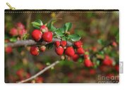 Red Spring Buds Carry-all Pouch