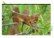 Red Squirrel In The Cherry Tree Carry-all Pouch