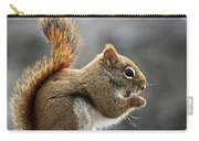 Red Squirrel On Wooden Fence II Carry-all Pouch