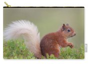 Red Squirrel Pauses Carry-all Pouch